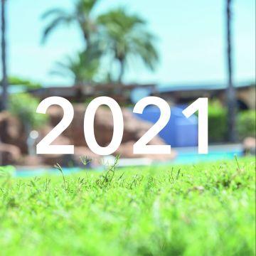 Novedades 2021!
